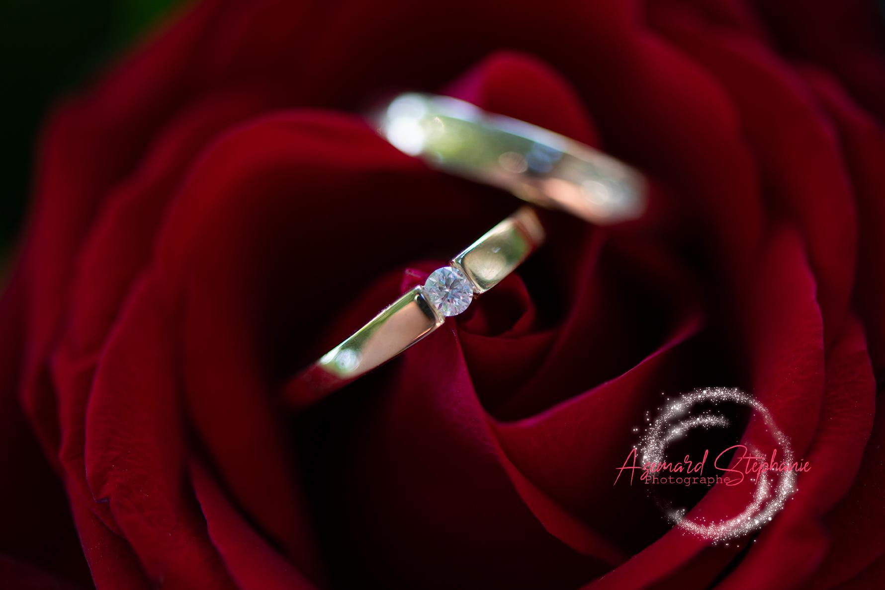 Alliance de mariage sur une rose rouge. Azemard Stéphanie photographe de mariage dans l'Hérault